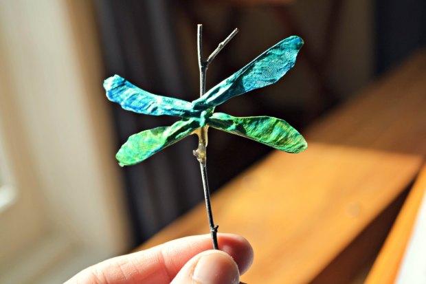 twig dragonfly